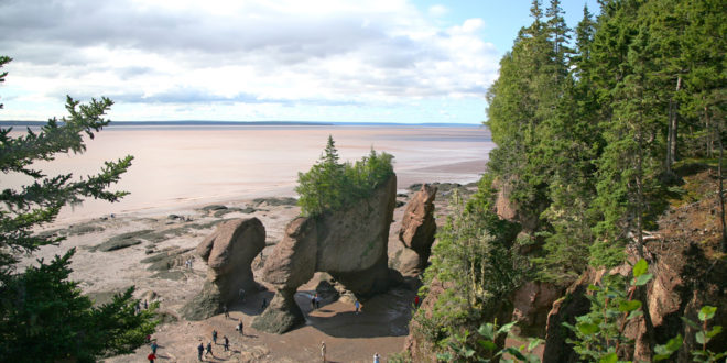 Hopewell Rocks bei Ebbe